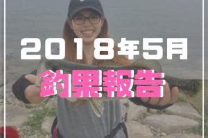 2018年5月釣果報告