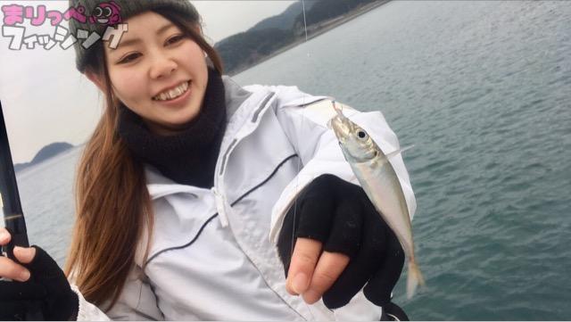 加太 サビキ釣り