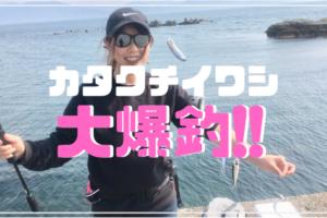 田ノ浦 サビキ釣り