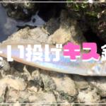 和歌川 キス釣り