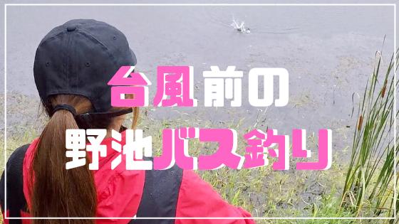 台風前のバス釣り