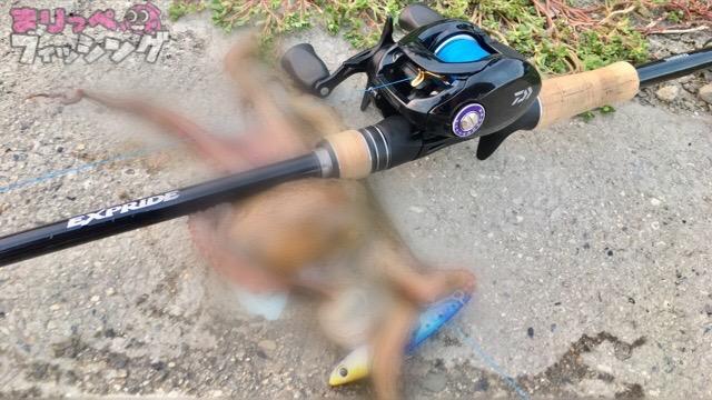 タコエギ釣り