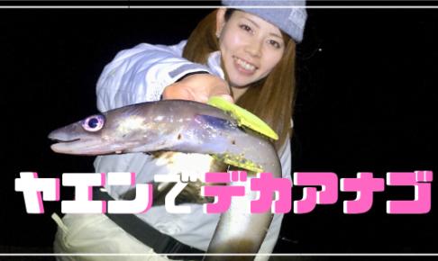 ヤエン釣り 和歌山